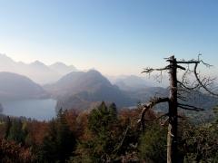 Alpsee - Neuschwanstein Castle